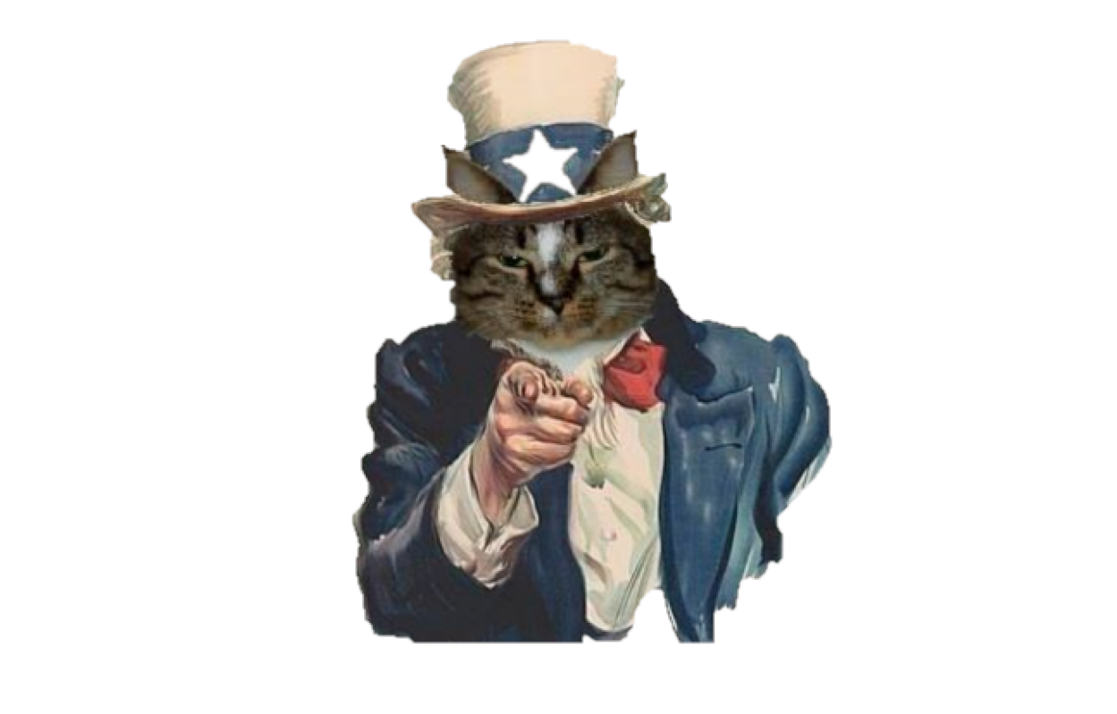 We Want YOU… to help us!