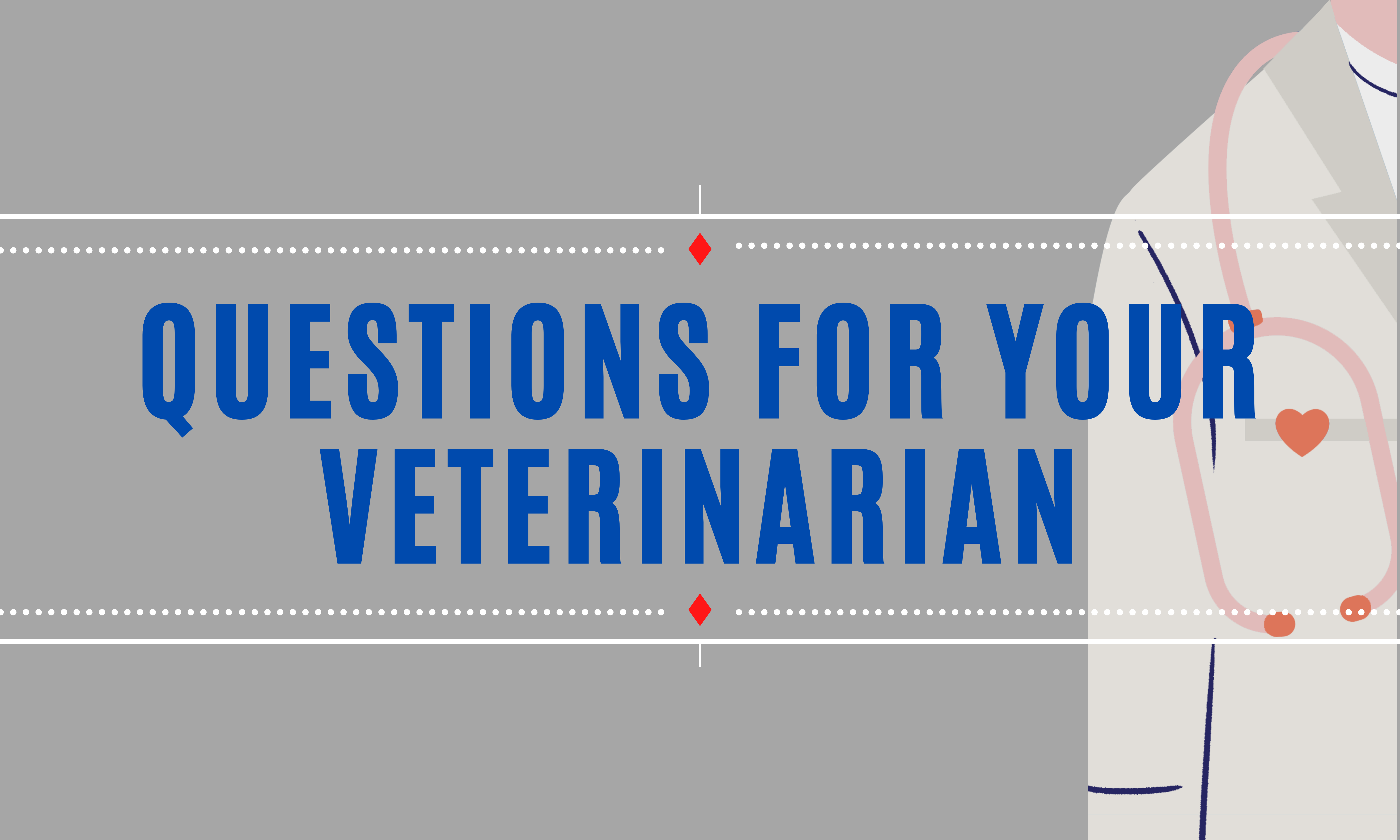 Questions for the Veterinarian